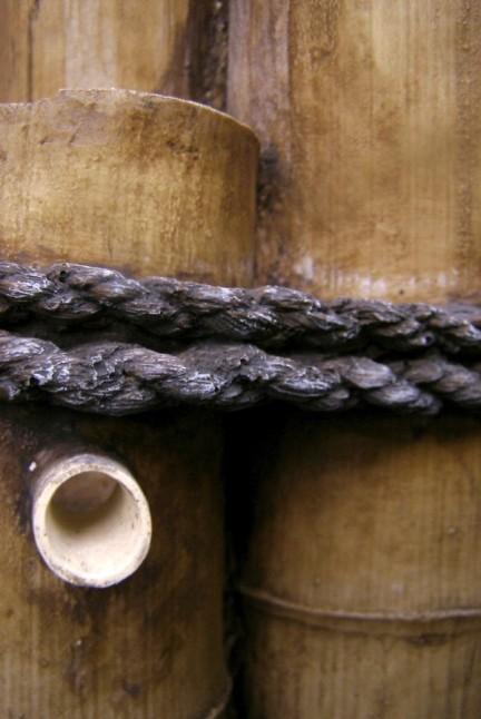 Wood_Addiction_by_SplotchedMalarky